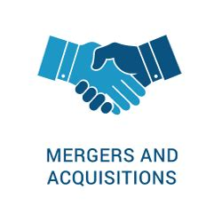 Mergers & Acquisitions - Executive Director Resume Example